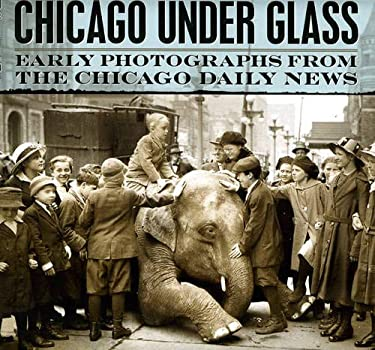 Chicago Under Glass: Early Photographs from the Chicago Daily News 9780226089300
