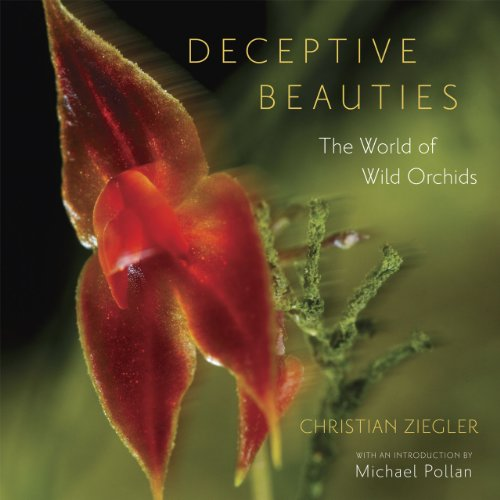 Deceptive Beauties: The World of Wild Orchids 9780226982977