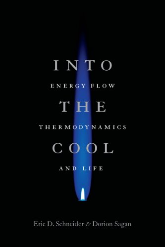 Into the Cool: Energy Flow, Thermodynamics, and Life 9780226739366