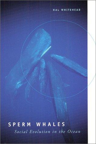 Sperm Whales: Social Evolution in the Ocean 9780226895185
