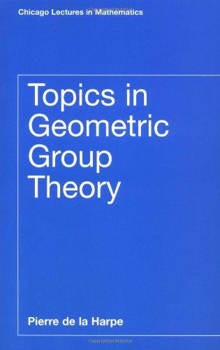 Topics in Geometric Group Theory 9780226317212
