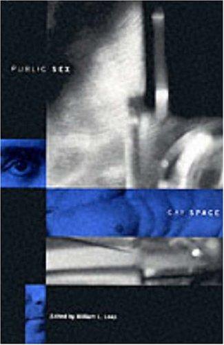 Public Sex/Gay Space 9780231106917