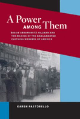 A Power Among Them: Bessie Abramowitz Hillman and the Making of the Amalgamated Clothing Workers of America 9780252032301