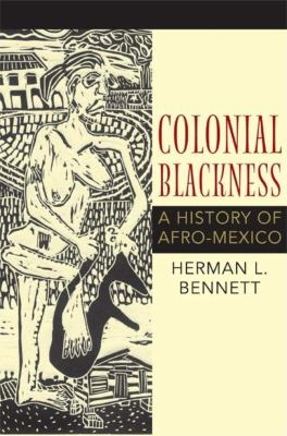 Colonial Blackness: A History of Afro-Mexico 9780253353382