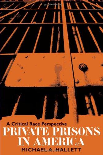 Private Prisons in America: A Critical Race Perspective 9780252073083