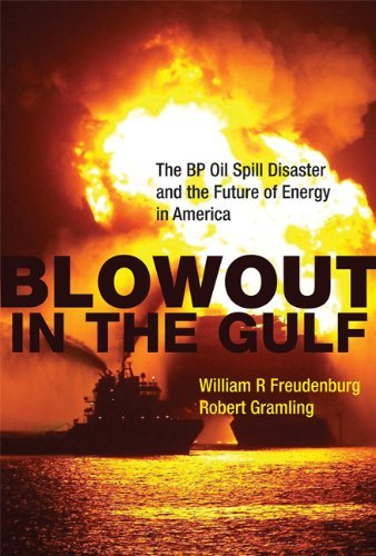 Blowout in the Gulf: The BP Oil Spill Disaster and the Future of Energy in America 9780262015837