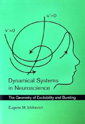 Dynamical Systems in Neuroscience: The Geometry of Excitability and Bursting 9780262514200