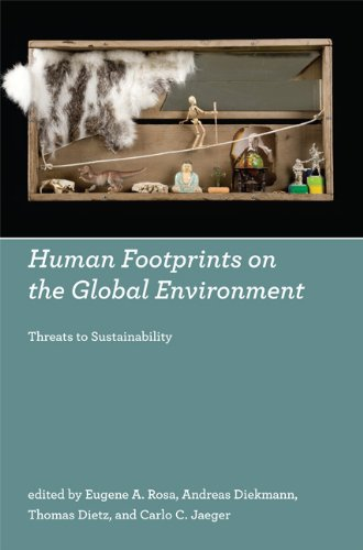 Human Footprints on the Global Environment: Threats to Sustainability 9780262512992