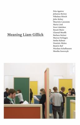 Meaning Liam Gillick 9780262513517