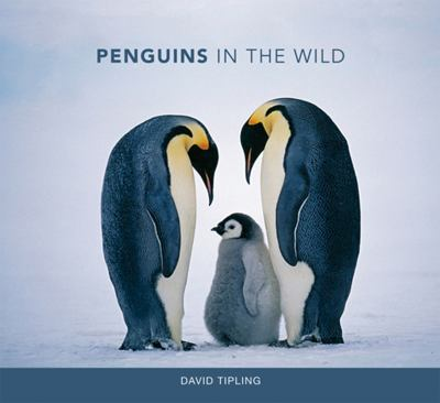 PENGUINS IN THE WILD 9780262019606