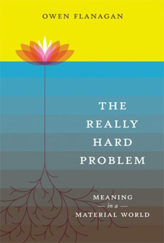 The Really Hard Problem: Meaning in a Material World 9780262512480