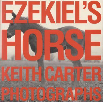 Ezekiel's Horse 9780292712294
