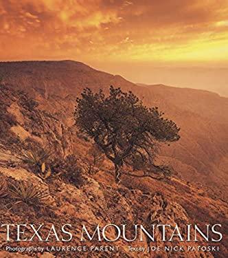 Texas Mountains 9780292765924
