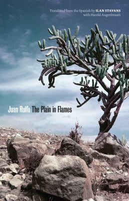 The Plain in Flames