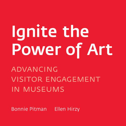 Ignite the Power of Art: Advancing Visitor Engagement in Museums 9780300167542