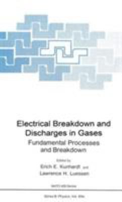 Electrical Breakdown and Discharges in Gases 9780306411946