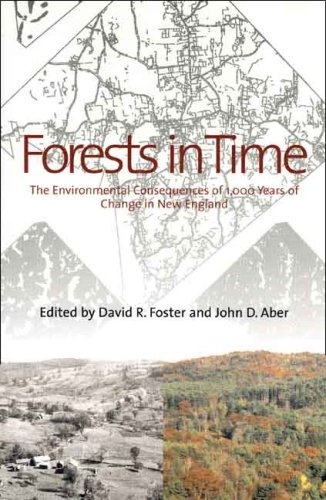 Forests in Time: The Environmental Consequences of 1,000 Years of Change in New England 9780300115376