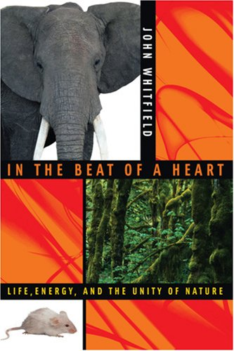 In the Beat of a Heart: Life, Energy, and the Unity of Nature 9780309096812