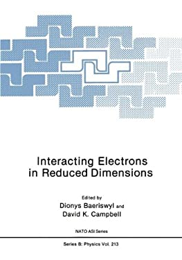 Interacting Electrons in Reduced Dimensions 9780306434150