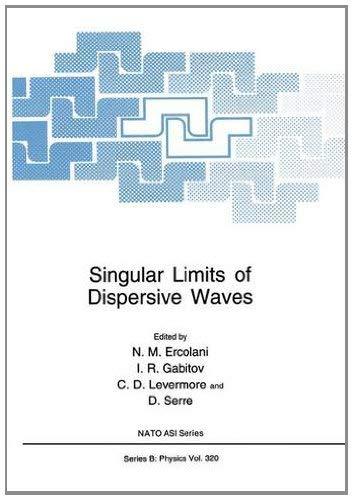 Singular Limits of Dispersive Waves 9780306446283