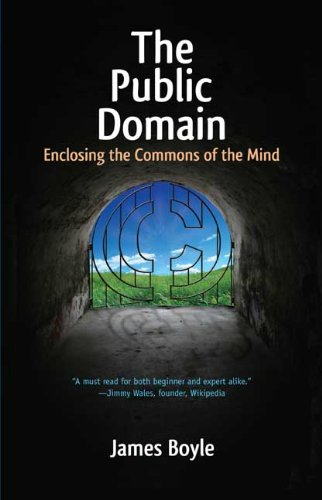 The Public Domain: Enclosing the Commons of the Mind 9780300158342