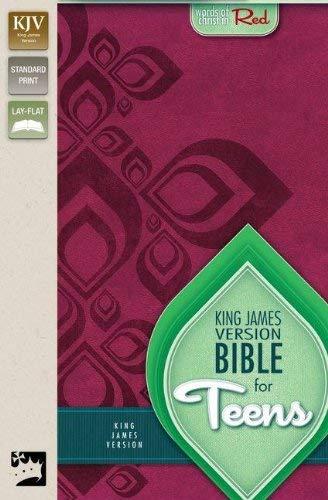 Bible for Teens-KJV 9780310728825