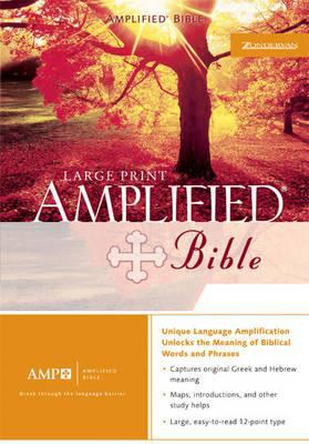 Amplified Bible Large Print, Purple Silver Gilding Jmm 9780310947684