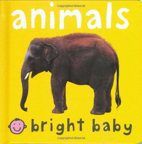 Animals 9780312492489