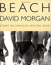 Beach 928992