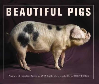 Beautiful Pigs: Potraits of Fine Breeds 9780312585969