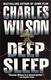 Deep Sleep 957101