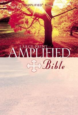 Large Print Bible-AM 9780310951728