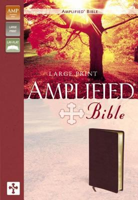 Amplified Large Print Bible-AM 9780310951834