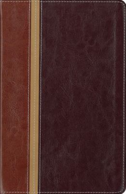 Message Parallel Study Bible-PR-NIV/MS-Numbered Personal Size 9780310939849
