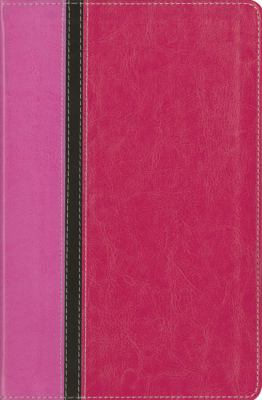 Message Parallel Study Bible-PR-NIV/MS-Numbered Personal Size 9780310939856