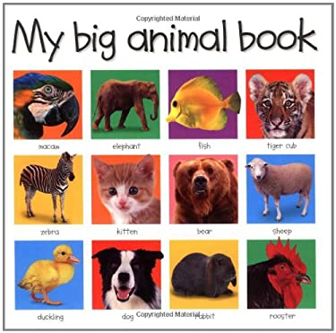 My Big Animal Book 9780312490836