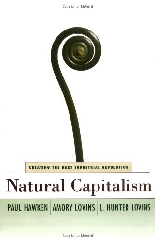 Natural Capitalism: Creating the Next Industrial Revolution 9780316353168