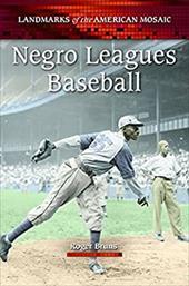 Negro Leagues Baseball 16383853
