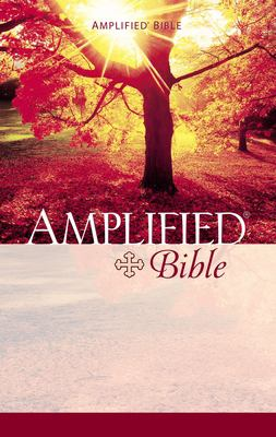 Amplified Bible-AM 9780310951414