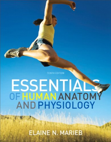 Essentials of Human Anatomy & Physiology 9780321695987