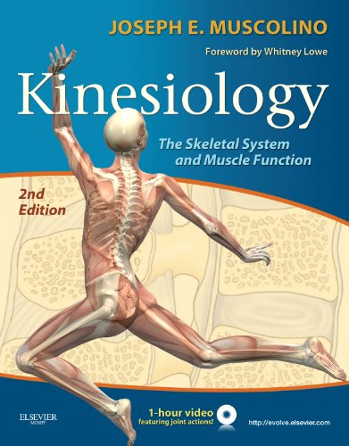 Kinesiology: The Skeletal System and Muscle Function 9780323069441