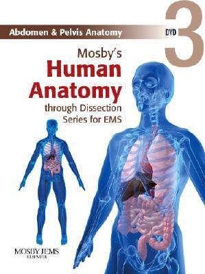 Abdomen & Pelvis Anatomy 9780323053280