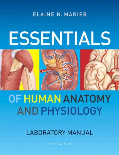 human anatomy and physiology lab manual pdf