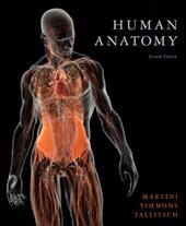 Human Anatomy - Martini, Frederic H. / Timmons, Michael J. / Tallitsch, Robert B.