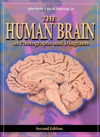 The Human Brain in Photographs and Diagrams 9780323011266