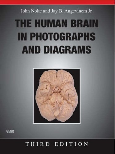 The Human Brain in Photographs and Diagrams [With CDROM] 9780323045735