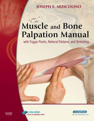 The Muscle and Bone Palpation Manual: With Trigger Points, Referral Patterns, and Stretching [With 2 DVDs] 9780323051712