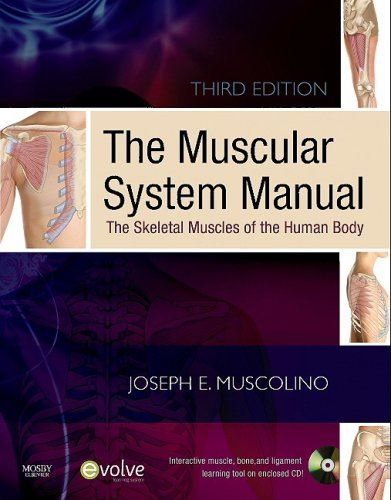The Muscular System Manual: The Skeletal Muscles of the Human Body [With CDROM] 9780323057233