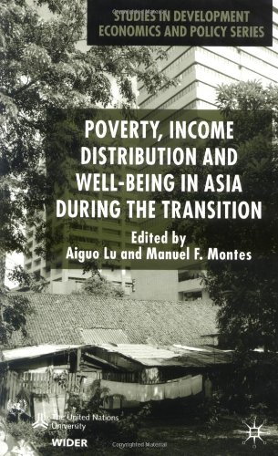 Poverty, Income Distribution and Well-Being in Asia During the Transition 9780333970263