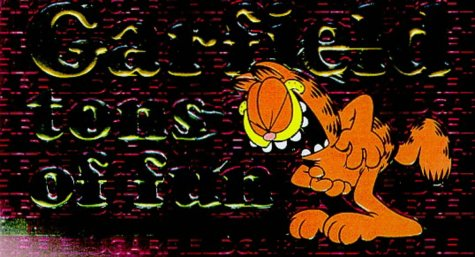 Garfield Tons of Fun 9780345403865